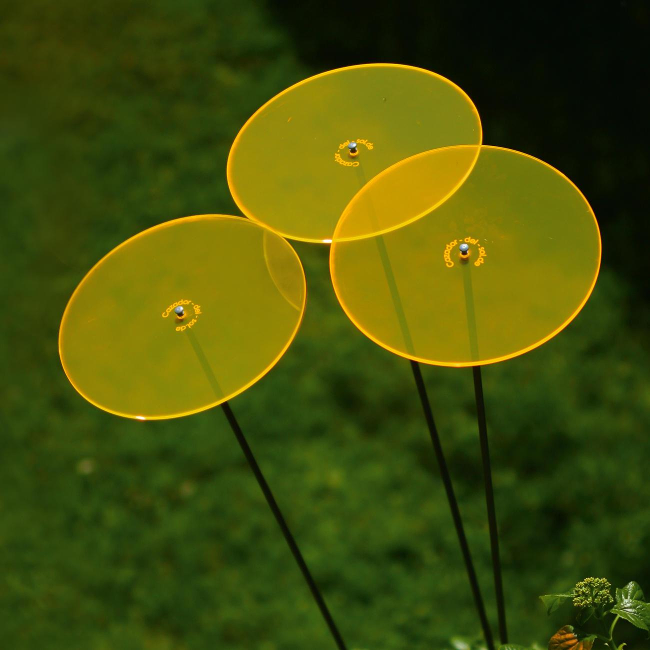 Cazador Del Sol Sonnenfänger Tres Gelb 3er Set 175 M Hoch