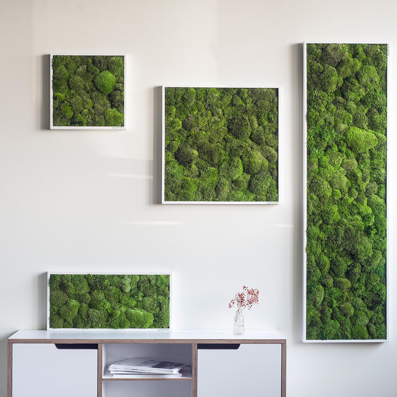moosbild konserviert 35 x 35 cm online kaufen. Black Bedroom Furniture Sets. Home Design Ideas