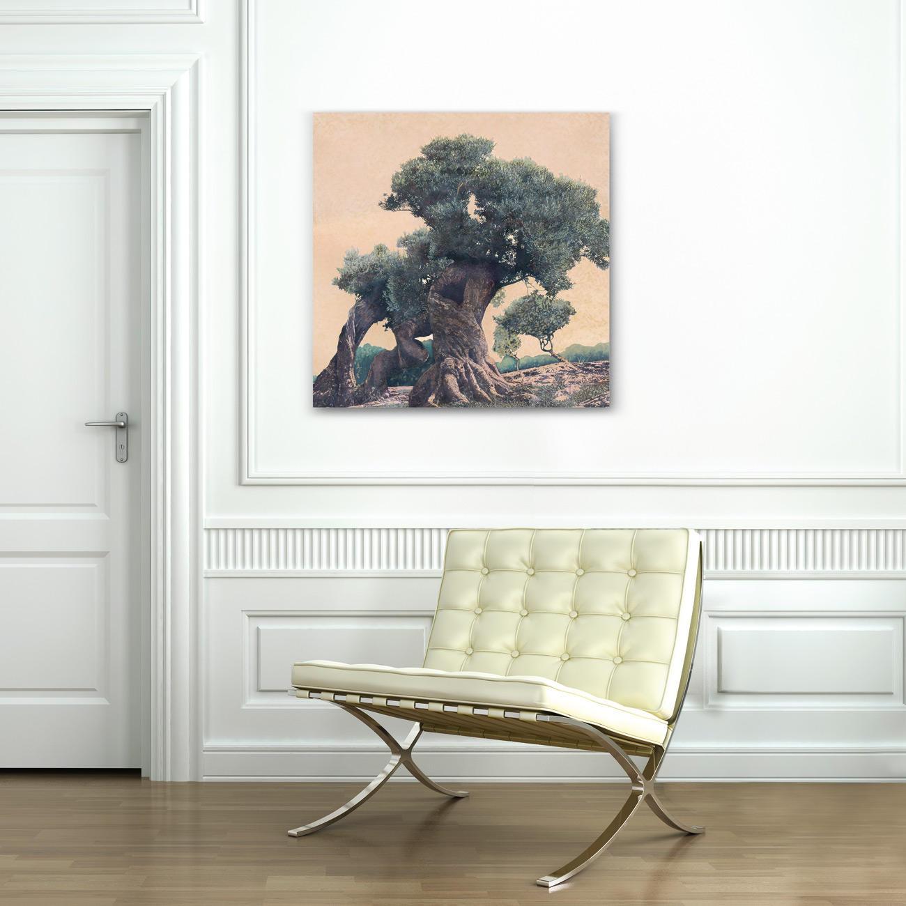 ingo wegerl olivenbaum kaufen pro idee kunstformat. Black Bedroom Furniture Sets. Home Design Ideas