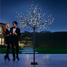 LED Kugellichter-Baum - 500 sanft strahlende Lichtkugeln schaffen eine zauberhafte Atmosphäre. Drinnen und draußen.