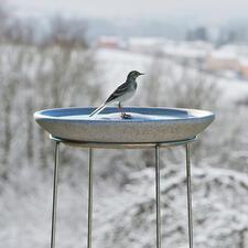 Granicium®-Vogeltränke mit Edelstahl-Ständer