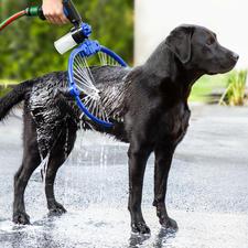 360° Hundewaschanlage - Mit 34 (!) Düsen und verstellbarem Wasserdruck, mit Shampoo-Dosierer.