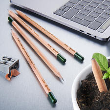 Nachhaltige Pflanzbleistifte, 5er-Set - Der wohl erste pflanzbare Bleistift der Welt. Mit Kräuter- und Blumensamen. Nachhaltig, umweltschonend und schön.