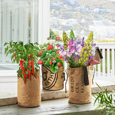 Mini-Garten - Mit diesen Pflanzbeuteln werden Balkon, Küchenfenster, Patio zum üppigen Sommergarten.