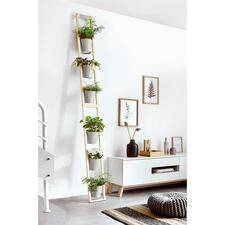 Pflanzleiter - Bequem und platzsparend: Ihr üppiger Garten Eden auf kleinstem Raum. Zum Stellen und Anlehnen.