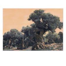 Ingo Wegerl – Der Olivenbaum - Erste handübermalte Leinwandedition von Ingo Wegerl. Jedes Werk mit unverwechselbarem Unikatcharakter. Niedrig limitiert – in zwei Grössen erhältlich. Maße: 110 x 75 cm