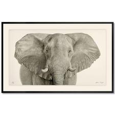 Koshi Takagi – Grauer Riese - Fotorealistische Bleistiftzeichnung. Mit über 1 Million handgemalten Strichen.  Koshi Takagis neueste Edition. 30 Exemplare. Maße: gerahmt 150 x 95 cm