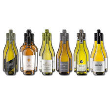 Weinsammlung - Die kleine Weißwein-Sammlung Frühjahr 2021, 24 Flaschen - Wenn Sie einen kleinen, gut gewählten Weinvorrat anlegen möchten, ist dies jetzt besonders leicht.