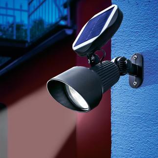 Solar Spotlight Modernste LED- und Solartechnik hebt Ihre Garten-Highlights hellweiß hervor.