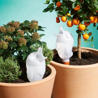 """Bewässerungsvogel """"Bird"""" Jetzt versorgen sich Ihre Pflanzen fast alleine. Mit genau der richtigen Menge Wasser."""