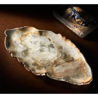 Servierschale aus fossilem Holz Kostbares Unikat: die Servierschale aus 20 Mio. Jahre altem versteinertem Holz.