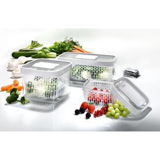 Greensaver™ Frischeboxen Geniale Vorratsboxen absorbieren Ethengas und schaffen für jedes Obst und Gemüse das optimale Lagerklima.