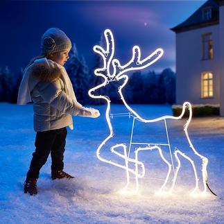 Rentier-LED-Silhouette Eine intensiv und rundum gleichmäßig leuchtende LED-Schnur zeichnet die Silhouette.
