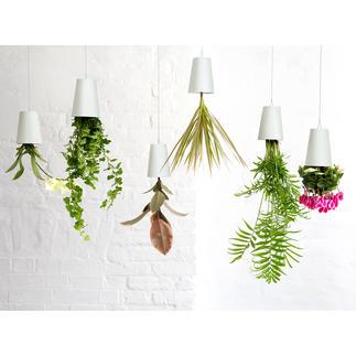 Blumentopf Sky Planter Ihre Kräuter, Grün- und Blühpflanzen hängen jetzt stylish kopfüber von der Decke.