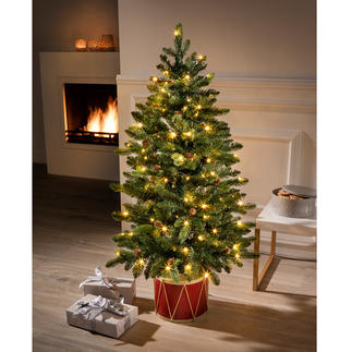 """Tannenbaum """"Noël"""", B-Ware Faszinierend naturgetreu. Und schon fertig, mit allem Drum und Dran."""