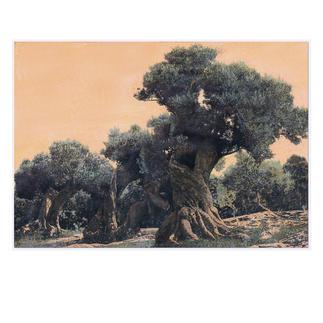 Ingo Wegerl – Der Olivenbaum Erste handübermalte Leinwandedition von Ingo Wegerl. Jedes Werk mit unverwechselbarem Unikatcharakter. Niedrig limitiert – in zwei Grössen erhältlich. Maße: 110 x 75 cm