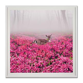 """Robert Jahns: """"Pink Deer"""" Robert Jahns: Einer der populärsten Instagram-Stars. Seine erste Edition – exklusiv bei Pro-Idee. 60 Exemplare."""