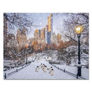 "Robert Jahns – New York City Penguins II Robert Jahns: Einer der populärsten Instagram-Stars. 50.000 Likes über Nacht für das Motiv seiner ausverkauften Edition ""New York City Penguins"". Neueste Edition ""New York City Penguins II"" exklusiv bei Pro-Idee. Maße: 110 x 85 cm"