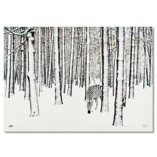 Robert Jahns – Snow Zebra Robert Jahns: Einer der populärsten Instagram-Stars. 40.000 Likes! Snow Zebra – jetzt als Leinwand-Edition. Exklusiv bei Pro-Idee. Maße: 100 x 70 cm