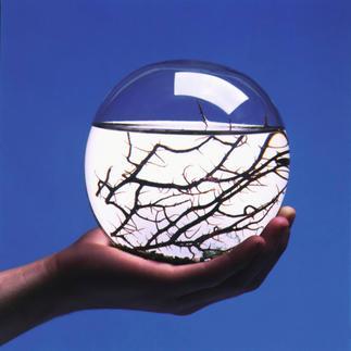 Ecosphere®, rund Das vollkommene Ökosystem im Wasserglas, entwickelt von der NASA.