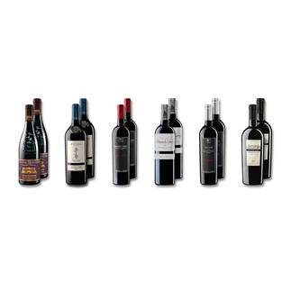 """Probierpaket """"Rotweine bis 20 € Frühjahr 2016"""", 12 Flaschen Probierpaket Rotweine, 12 Flaschen"""