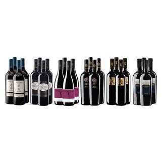 """Weinsammlung """"Die kleine Rotwein-Sammlung für anspruchsvolle GenießerFrühjahr/Sommer 2017"""", 24 Flaschen Wenn Sie einen kleinen, gut gewählten Weinvorrat anlegen möchten, ist dies jetzt besonders leicht."""