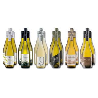 """Weinsammlung """"Die kleine Weißwein-Sammlung Herbst 2019"""", 24 Flaschen Wenn Sie einen kleinen, gut gewählten Weinvorrat anlegen möchten, ist dies jetzt besonders leicht."""