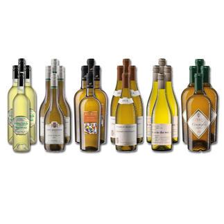"""Weinsammlung """"Die kleine Weißwein-Sammlung Frühjahr/Sommer 2020"""", 24 Flaschen Wenn Sie einen kleinen, gut gewählten Weinvorrat anlegen möchten, ist dies jetzt besonders leicht."""