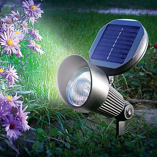 Bei Dämmerung schaltet sich das Solar Spotlight automatisch ein.