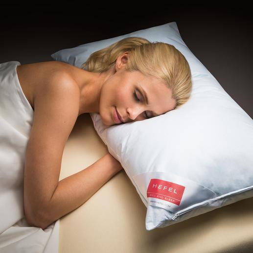 Hefel Cool-Kissen - Tiefer, erfrischender Schlaf in heißen Nächten. Leitet Wärme von Kopf, Gesicht und Nacken weg.