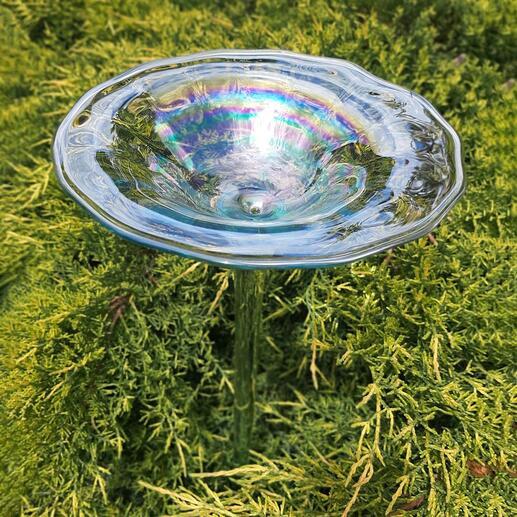 Regenbogenglas-Vogeltränke
