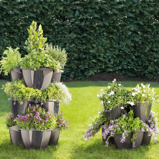 Etagen-Pflanzturm, 5-teilig - Opulente Blumenpracht auf kleinem Raum. Prächtiger Pflanzturm. Oder einzelnes Pflanzrondell.