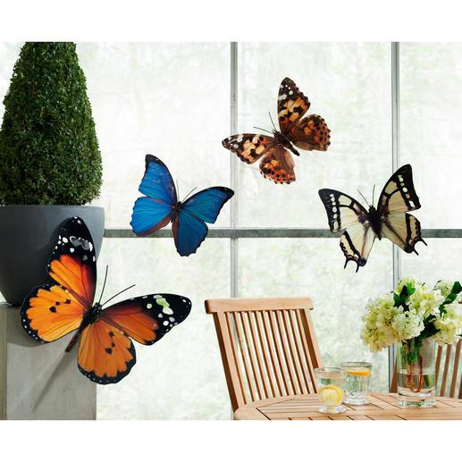 Fotodruck-Schmetterlinge, 4er-Set - XL-Schmetterlinge umschwärmen dekorativ Ihre Terrasse, Hauswand, Fenster, ...