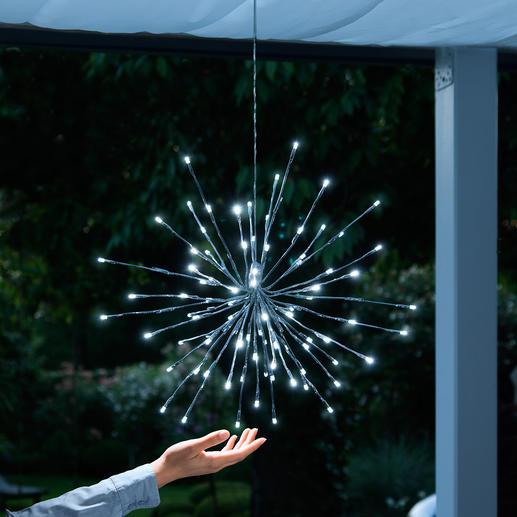 """Leuchte """"Eiskristall"""" - Blitzenden Eiskristallen gleich setzen 60 LEDs und 30 zierliche Blinker einen märchenhaften Akzent im Astwerk."""