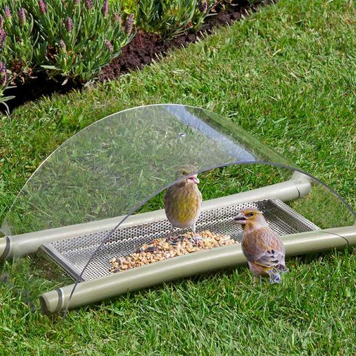 Boden-Vogelfutterstelle - Füttern. Schützen. Beobachten. Idealer Futterplatz für viele heimische Vogelarten: raffiniert konstruiert, einfach zu reinigen.