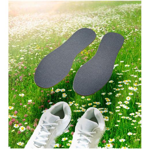 CLEANFEET Anti-Geruchs-Sohlen, 3 Paar - Bio-aktive Einlegsohlen neutralisieren Fußgeruch – statt ihn zu überdecken.