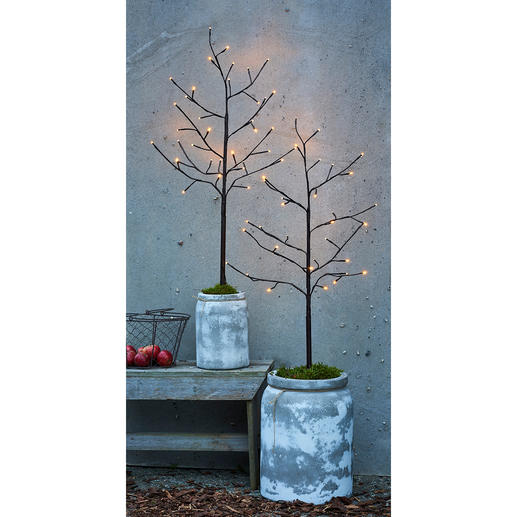 Lichterbaum 110 cm, 150 cm oder 180 cm Geheimnisvoll leuchtende Deko-Bäume verzaubern Ihre Terrasse, Ihr Entree.