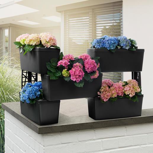 Pflanzkasten-Modulsystem, 5er-Set - Begrünte Trennwand, blühender Sichtschutz, Kräuter-Hochbeet, Blumentreppe, ... Mit integriertem Bewässerungssystem.