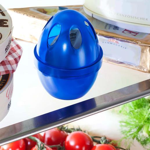 Kühlschrank-Geruchskiller - Natürliche Frische in Ihrem Kühlschrank.