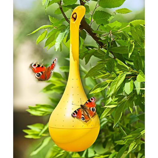 Schmetterlings-Oase - Umschwärmter Treffpunkt: Ihre Schmetterlings-Oase im Garten, auf Ihrem Balkon.