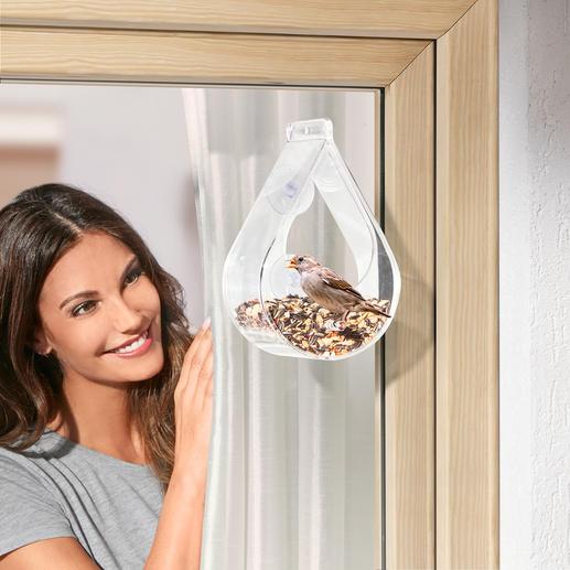 Fensterfutterstation für Gartenvögel - Preisgekrönt: für viele Vögel die perfekte Futterstelle. Für Sie ein bezaubernder Anblick.