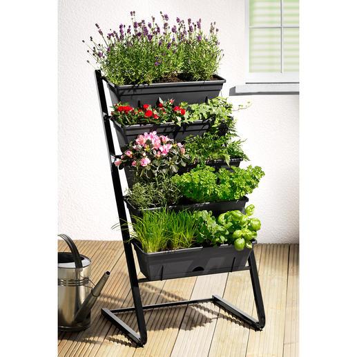 Pflanztreppe Mit integriertem Wasserreservoir. Perfekt auch als Sichtschutz und Hochbeet.