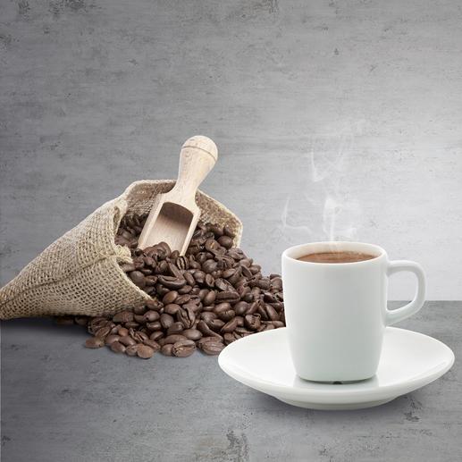 Caso Kaffeemühle Barista Flavour