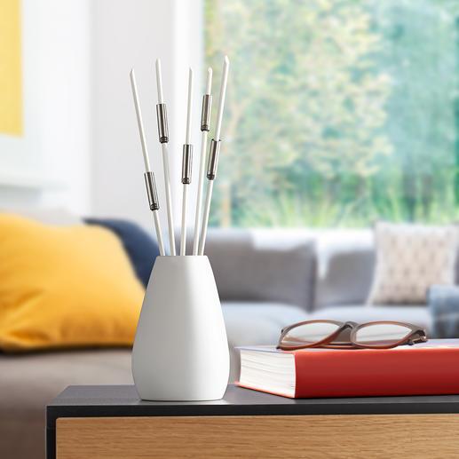 Geruchskiller-Sticks, 5er-Set Perfekt gegen Tabakrauch, Küchengerüche, Plastikdünste, ...