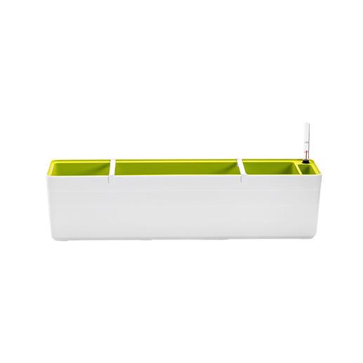 Weiß/Grün