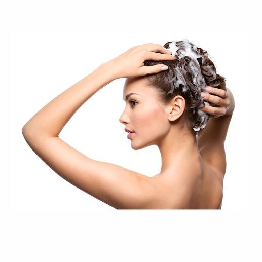 HaarmilchAufbau-und Repair-Shampoo, 250 ml