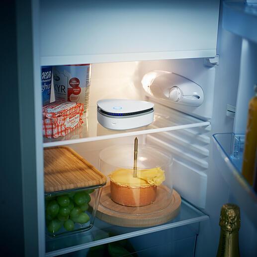 Geruchs- und keimfreie Luft im Kühlschrank…