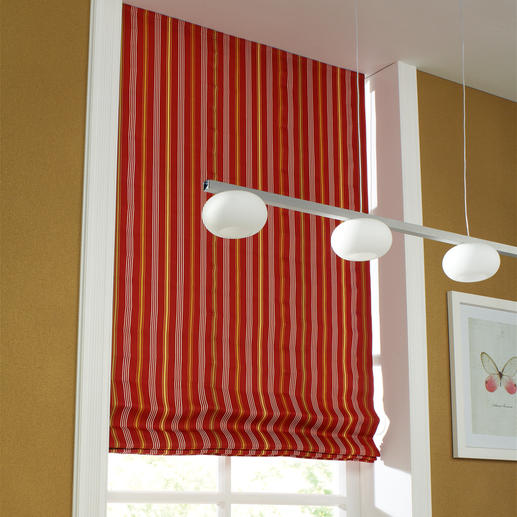 Faltrollo Rayé - 1 Stück Sonnige Markisenstreifen halten Licht und Wärme ab.
