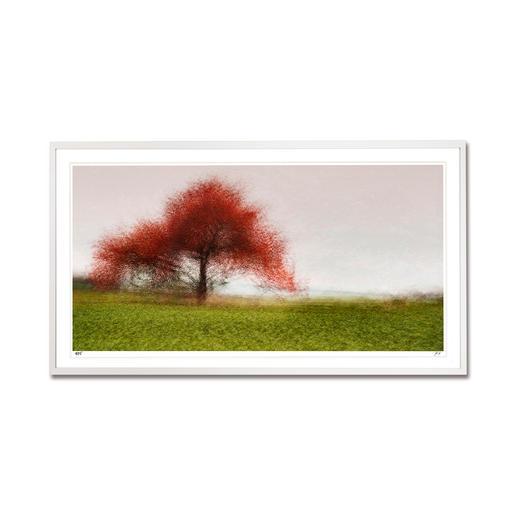 """Jacob Gils – Frederiksdal #6 Impressionistisches Gemälde? Oder modernste Fotografie? Jacob Gils' Edition """"Frederiksdal #6"""" aus über 100 Einzelaufnahmen. Exklusiv bei Pro-Idee. 25 Exemplare. Maße: 110 x 55 cm"""