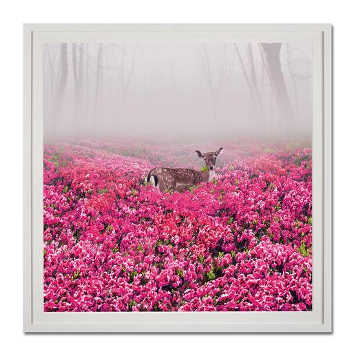 Robert Jahns – Pink Deer Robert Jahns: Einer der populärsten Instagram-Stars. Seine erste Edition – exklusiv bei Pro-Idee. 60 Exemplare. Maße: gerahmt 110 x 110 cm